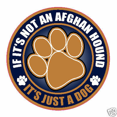 "Not An Afghan Hound Just A Dog 5"" Sticker"