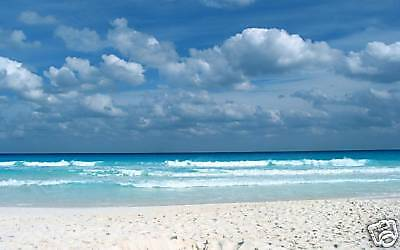Digital Backdrops over 840 for Green Screen n photoshop Beaches, Waterfalls