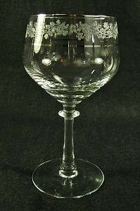 Fostoria Glass Venise Water Goblet~Etched Flowers