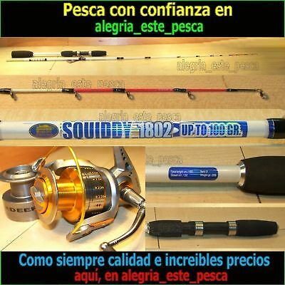 PESCA EQUIPO JIGGING (SQUIDDY 1.80mts + DEEP JIG 80)