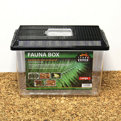 Terra Exotica Faunabox Large , 37 x 22 x 24,5 cm , Transportbox