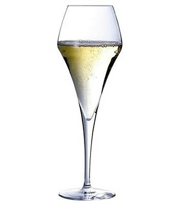 12 COUPES A CHAMPAGNE FLORAL 21 cl AROM'UP 11+1 GRATUIT