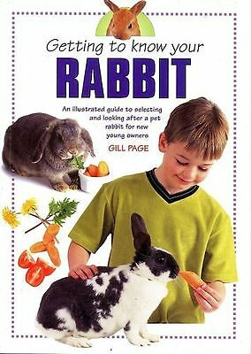 Getting To Know Your Rabbit Book