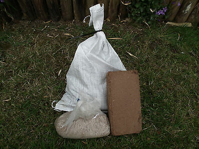 Wormery Start Up Pack 250g Worms, Coir Block Bedding & 250g Worm Food