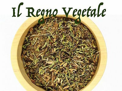 SPACCAPIETRA PURO Taglio Tisana 100g Calcoli Renali Renella Ceterach Officinarum