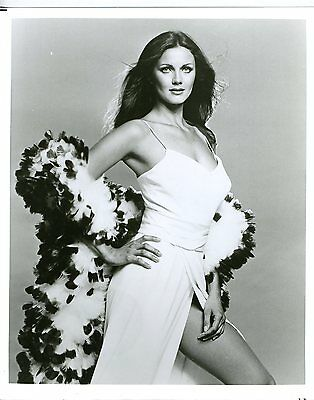 LYNDA CARTER SEXY 8X10 COPY PHOTO TV1561