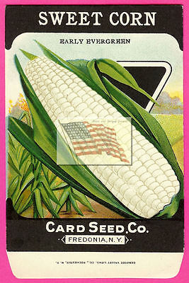 card seed co SWEET CORN EARLY EVERGREEN 380 ORIGINAL no seeds 1920 seed pack