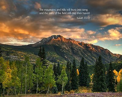 Scripture and Picture Photo Inspirational Bible Verse Passage Isaiah 55:12