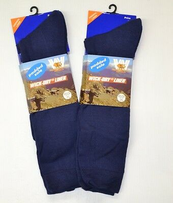 6 PAIR Wilderness Wear WICK DRY LINER SOCKS rrp $143.- + FREE POST sz  12-15