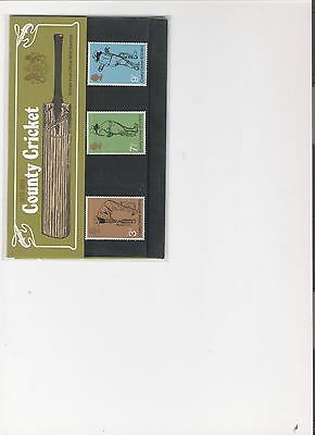 1973 Royal Mail Presentation Pack County Cricket Mint Decimal Stamps