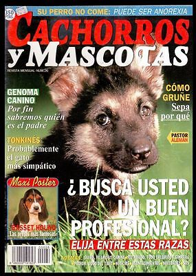 CACHORROS Y MASCOTAS Nº 26 - SPAIN MAGAZINE - Poster Basset Hound, Tonkines