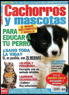 CACHORROS Y MASCOTAS Nº 62 - SPAIN MAGAZINE - Border Collie, British Shorthair