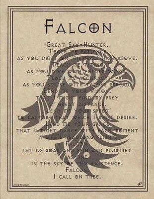 FALCON PRAYER - POSTER  Wicca Pagan Witch Witchcraft Goth BOOK OF SHADOWS TOTEM