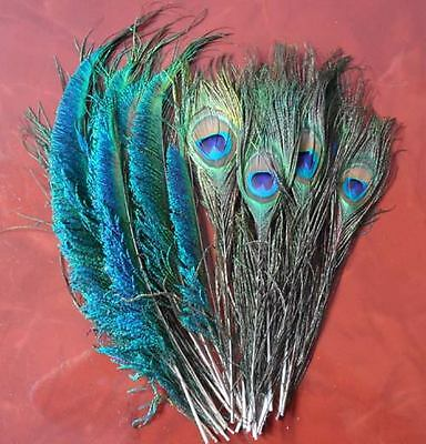 Lots 50pcs Natural Peacock Tail & 50pcs Peacock Sword Feather 10-12Inch Decorate