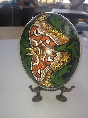 artist original Hand Painted butterfly design Decorated Ostrich Egg.