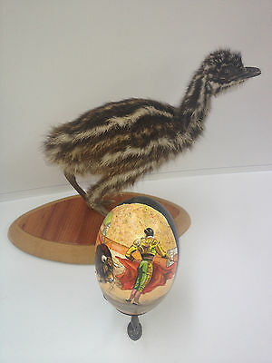 artist original Hand Painted bull fighter design Decorated Emu Egg.