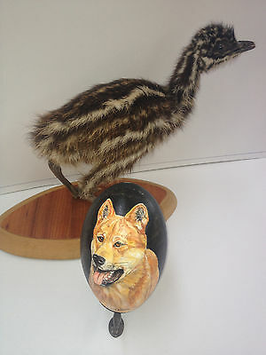 artist original Hand Painted dog design Decorated Emu Egg.