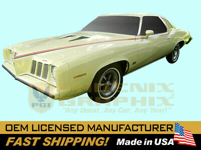 1973 1974 Pontiac Grand Am Decals & Stripes Kit