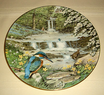 PETER BARRETT Creatures Great Small Otters Trout Birds MAY WOODLAND FALLS Plate