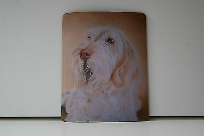 Dog Mousemat - ITALIAN SPINONE by UK artist  (Choice of two images)