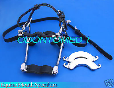 Equine Mouth Speculum for Horses