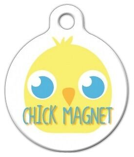 CHICK MAGNET - Custom Personalized Pet ID Tag for Dog and Cat Collars