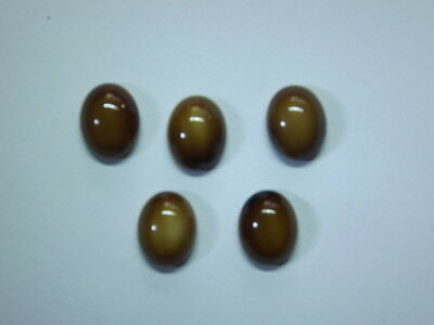 5x  Tiger Eye 10x8mm Semi Precious Stone Jewellery Cabouchons Cabochon Gemstone