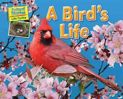 A Bird's Life by Ellen Lawrence (English) Library Binding Book Free Shipping!