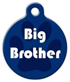 BIG BROTHER - Custom Personalized Pet ID Tag for Dog and Cat Collars