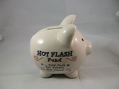 White Funny Piggy Bank Hot Flash Fund cold cash for future hot times Ceramic Pig