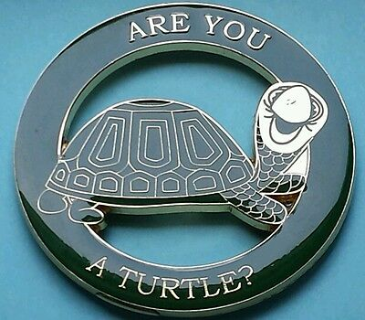 New Are You A turtle Cut Out Car Emblem