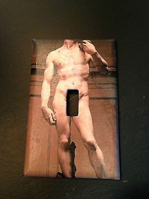 Switch Plate made with photo of David Statue - Gay interest