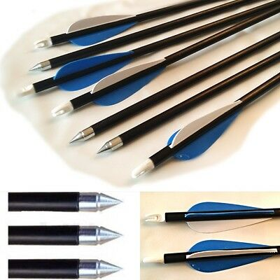 "New Fibreglass 31.5"" CARBON GRADE Steel Tip Archery Arrows Nocks suits Most Bows"