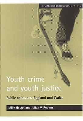 Youth Crime and Youth Justice: Public Opinion in Englan - Paperback NEW Hough, M