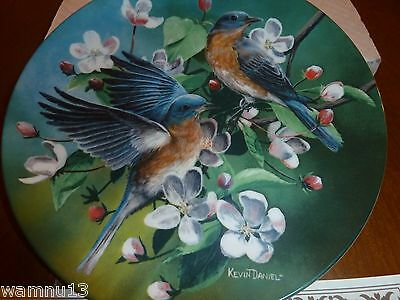 "Bradex Knowles Encyclopaedia Britannica Birds of Your Garden ""The Bluebird"""