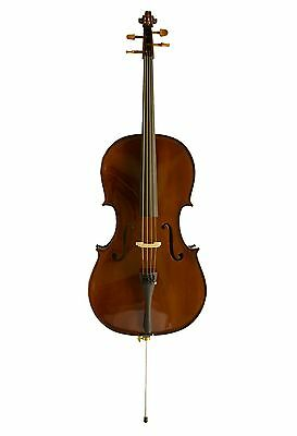 Einsteiger Cello-Set in Palisander (Basic II) inkl. Tasche, Koffer, Kolophonium