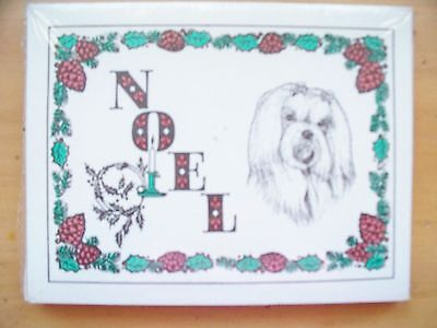 Pack of 12 - Designer Sheets Lhasa Apso Noel Christmas Holiday Cards