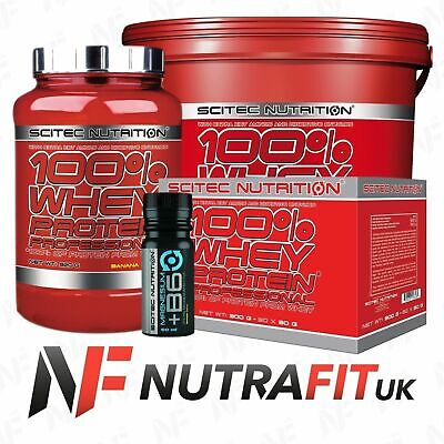 Scitec Nutrition 100% Whey Protein Professional Bcaa