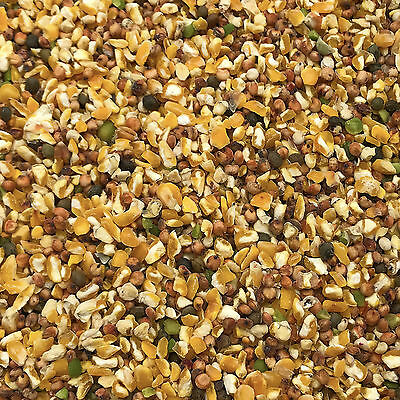 20KG Deluxe Pecker Husk Free Wild Bird Food Seed with Aniseed and Soya Oil