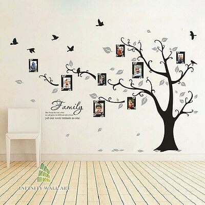 Family Tree Bird Photo Frame Vinyl Nursery Wall Quotes, Wall Stickers, --- PD508