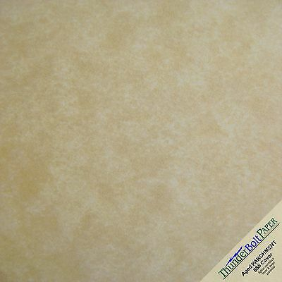 125 Aged Parchment CardStock 65# Old Looking Paper Sheets 12x12 Scrapbook Size