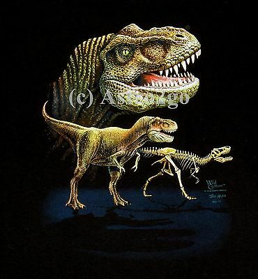 DINOSAURS OF NORTH AMERICA--T Rex Reptiles 2 Sided Kids T shirt sizes Sm Md Lg