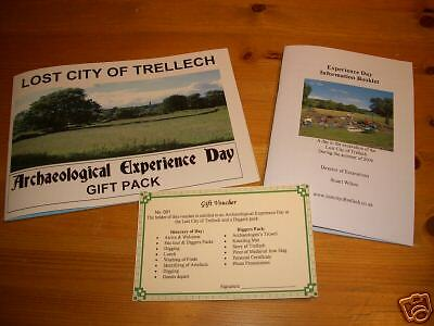 Archaeological Experience Day dig & explore a lost city