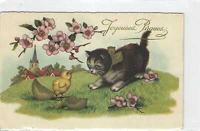 Cat,Cats,Kit Play with Chick,Unused,Old Postcard