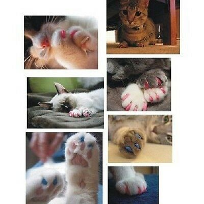 20pcs New Fake Artificial Soft Cat Pet Nail Caps Claw Control Paws off + Glue