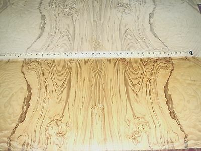 "Olive Ash Burl wood veneer 36"" x 48"" with wood backer (1/15th""-1/20th"" thick) A"