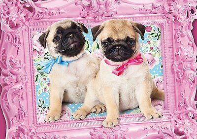 Pug and Puglet: Schmidt Dog Jigsaw Puzzle 500 pieces 57358