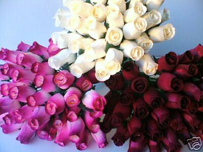 Mothers Day Flowers Gift 100 Cream & Burgundy Set Wooden Roses Wholesale Job Lot
