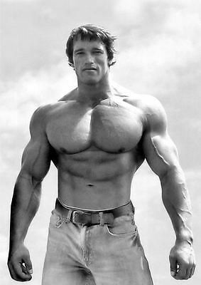 Arnold Schwarzenegger Bodybuilding Photo Poster Wall Print Arnie Mr Universe 03