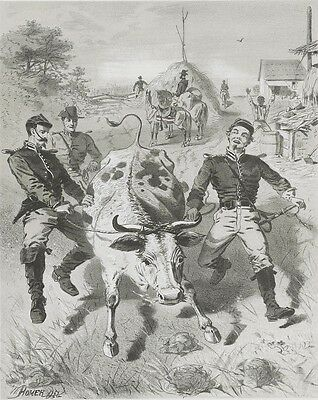 Civil War Campaign Sketch by Winslow Homer: Union Soldiers Running Off with Cow